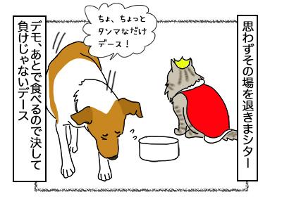 11112017_dog4mini.jpg