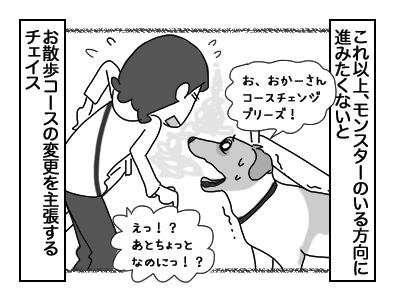 12122017_dog2mini.jpg