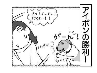 12122017_dog4mini.jpg