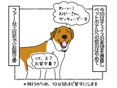 19102017_dog1mini.jpg