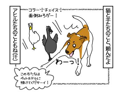 19102017_dog2mini.jpg