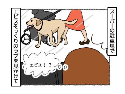 21112017_dog1mini.jpg