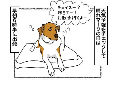 24112017_dog2mini.jpg