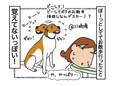 24112017_dog4mini.jpg