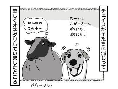 27112017_dog1mini.jpg