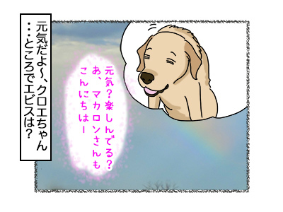 31102017_dog2.jpg