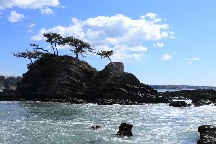 弁天島2-S