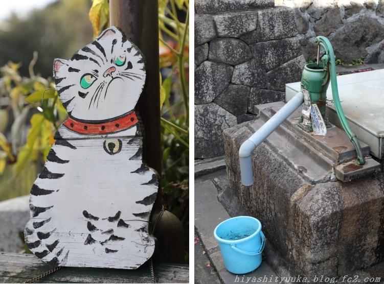 3199 猫の小道&井戸ーSN