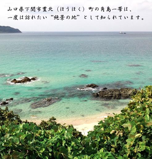 1110yamaguchi.jpg