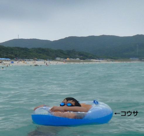1113tunoshima.jpg