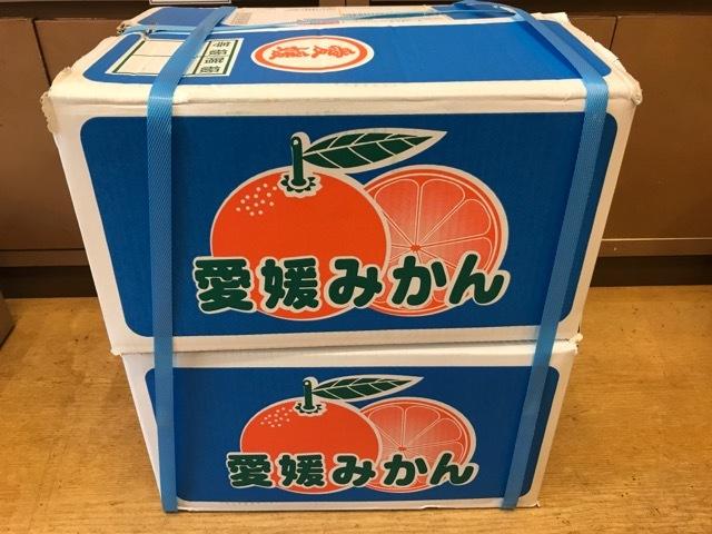 みかん箱買い (1)