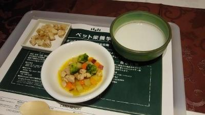 箱根ルチアプレミアムスィート