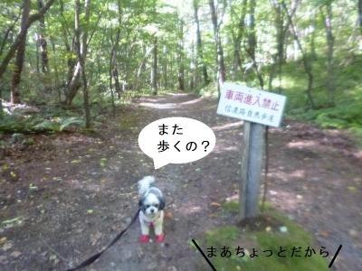 軽井沢 キャバマル
