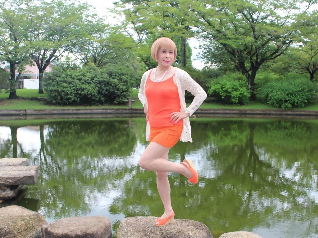 オレンジマイクロミニA(5)