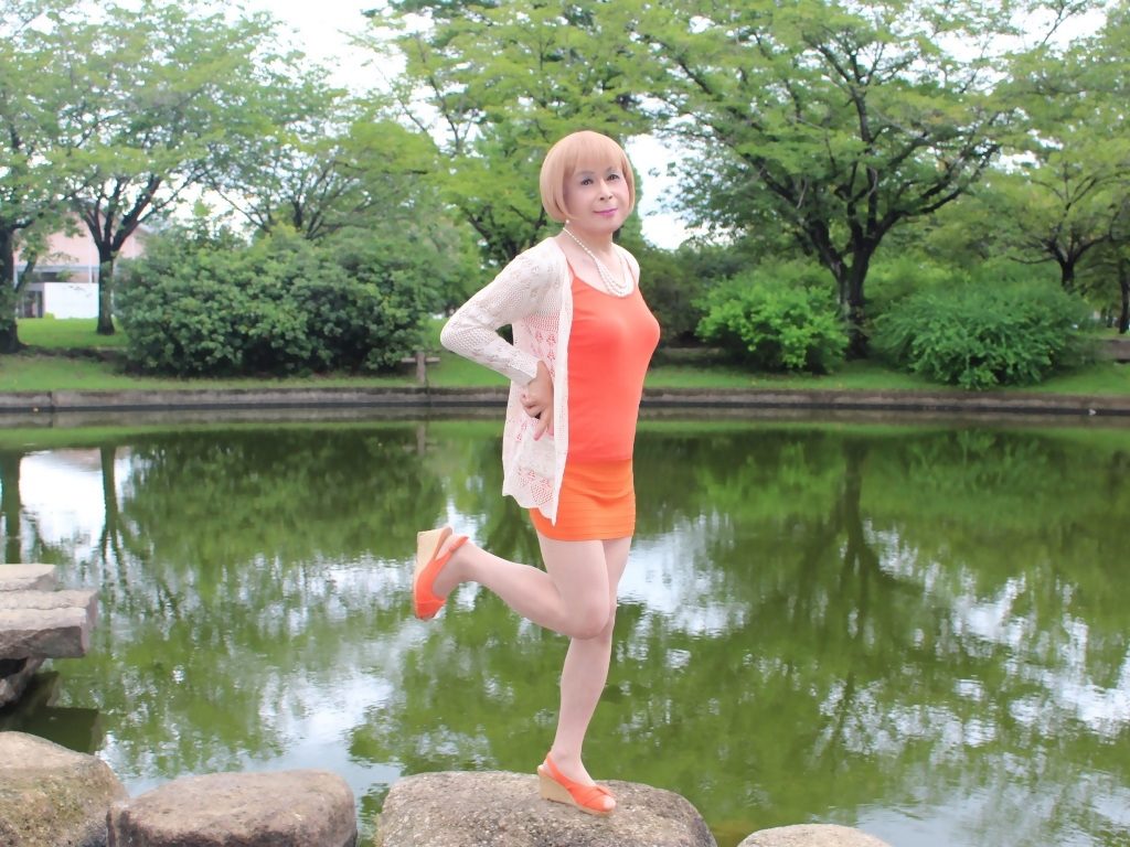 オレンジマイクロミニA(6)