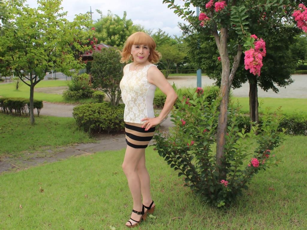 茶ボーダー柄ミニスカE(4)
