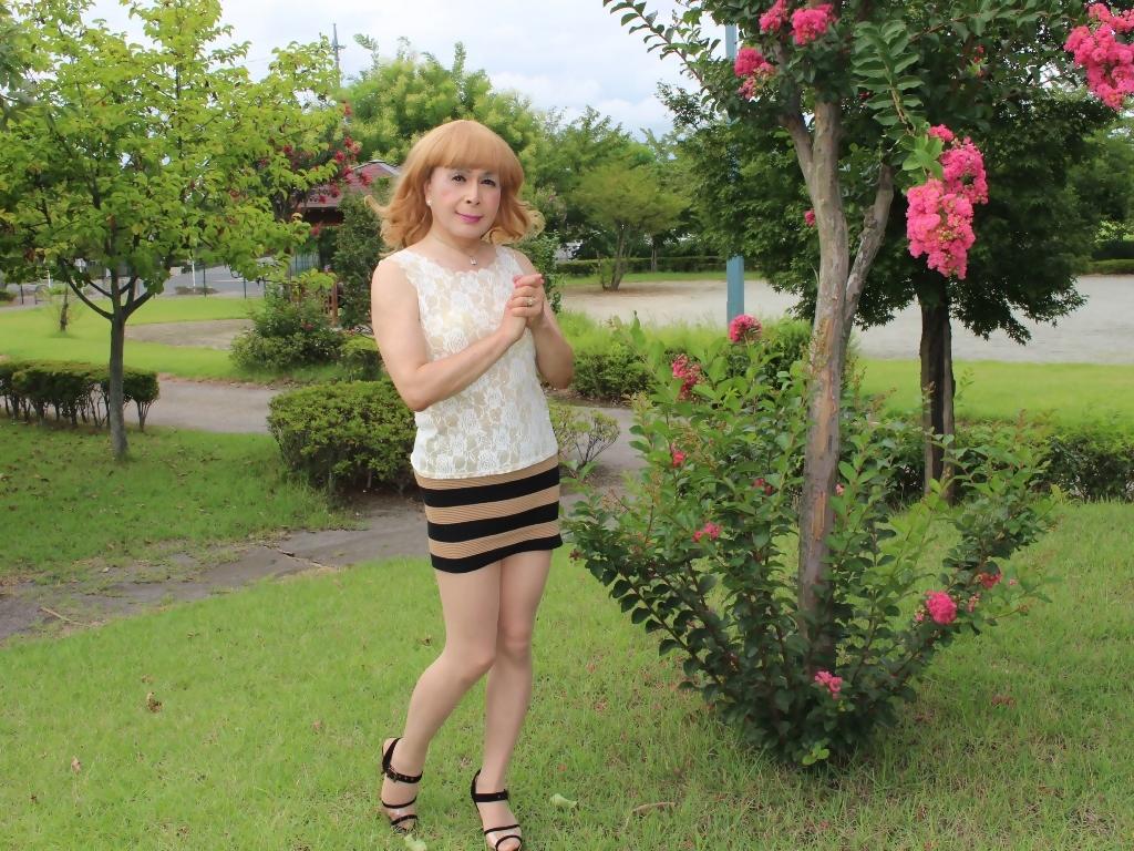 茶ボーダー柄ミニスカE(5)