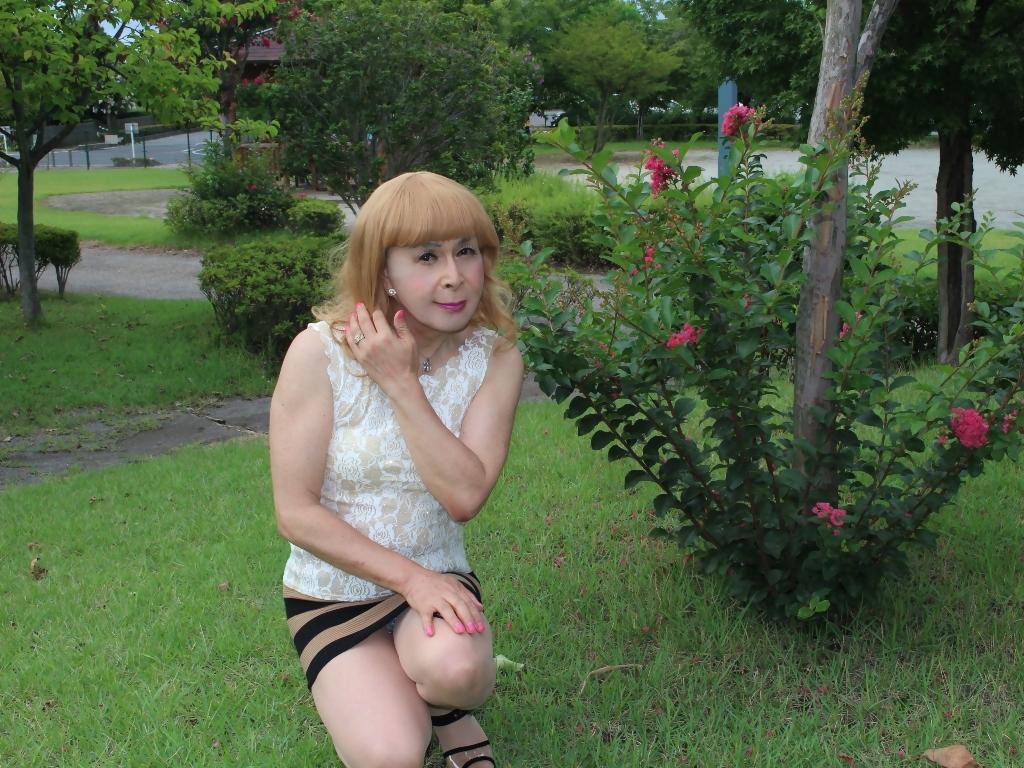 茶ボーダー柄ミニスカE(7)