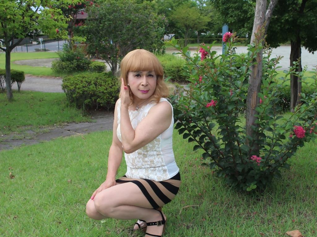 茶ボーダー柄ミニスカE(8)