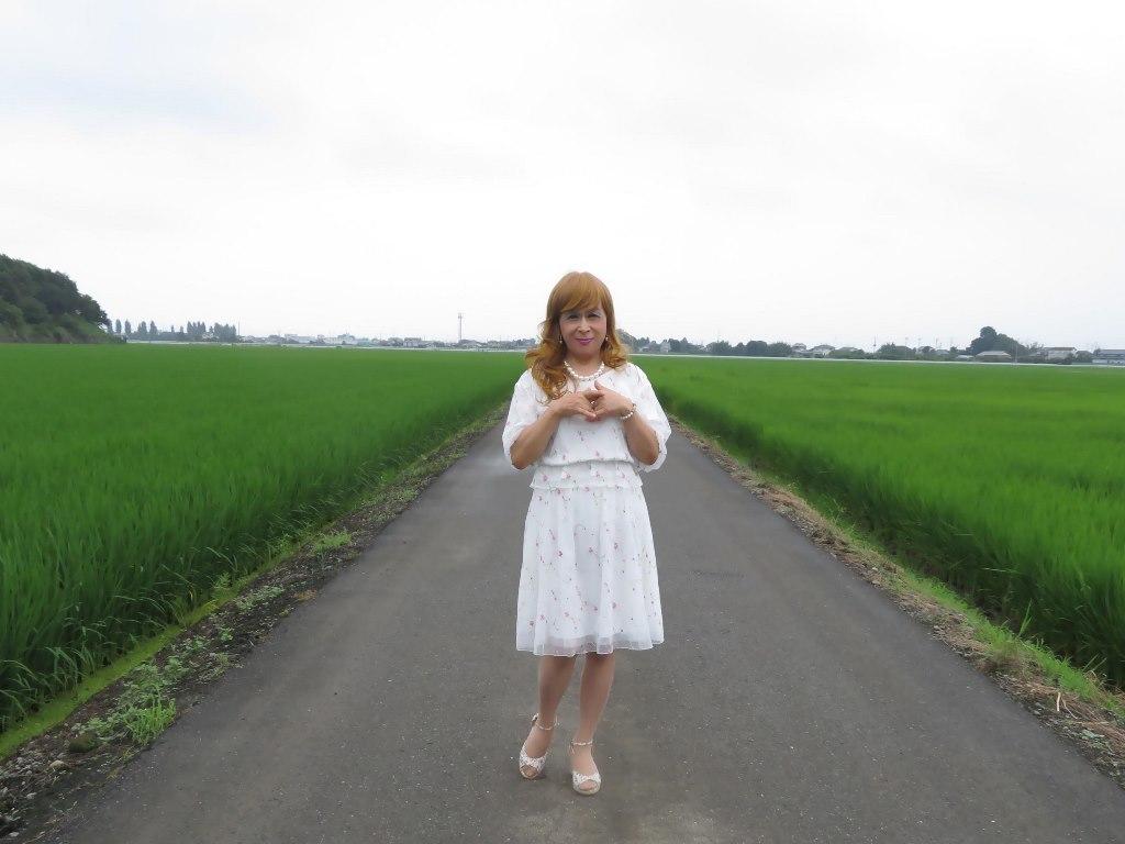 シフォン小花柄ツーピースA(3)