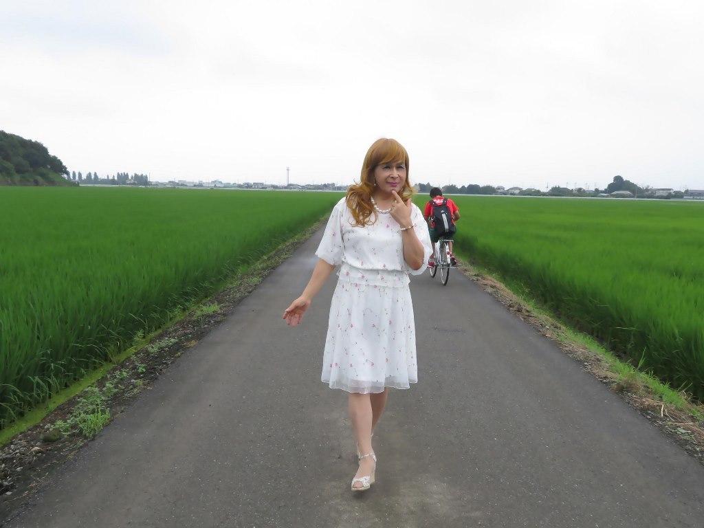 シフォン小花柄ツーピースA(4)