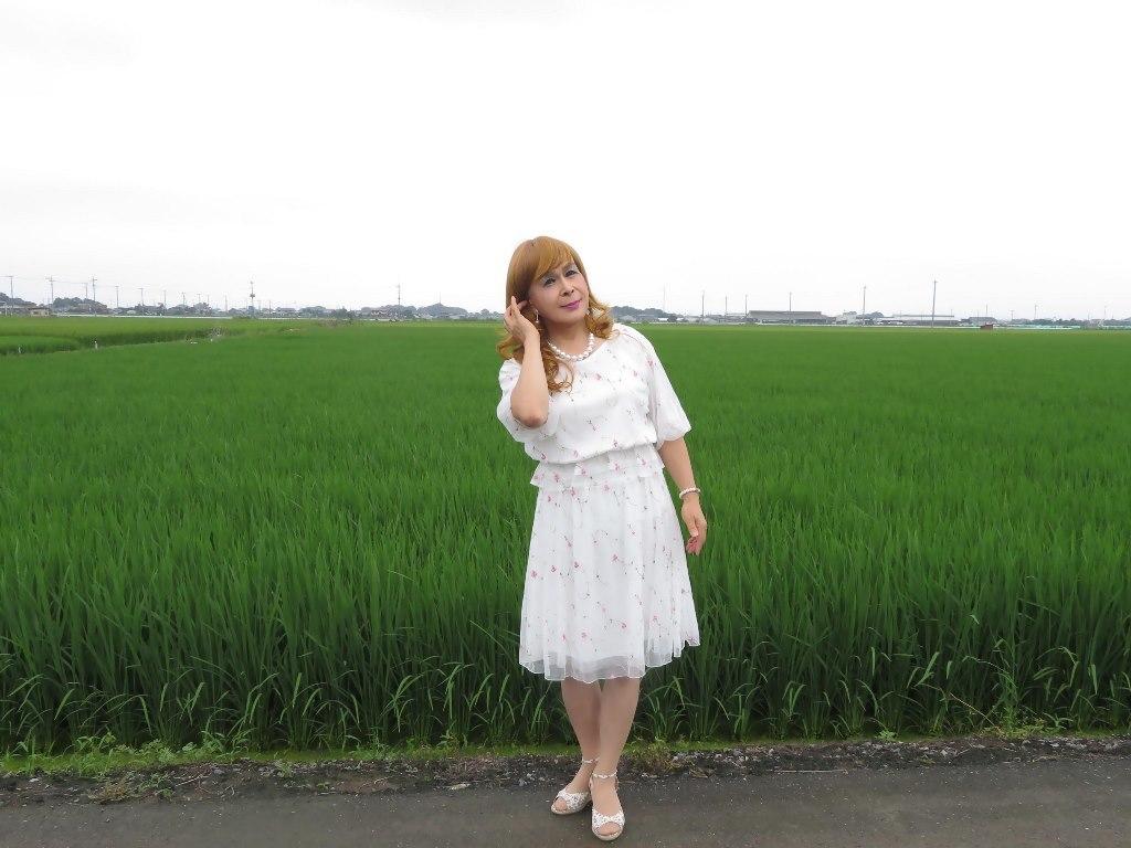 シフォン小花柄ツーピースA(7)