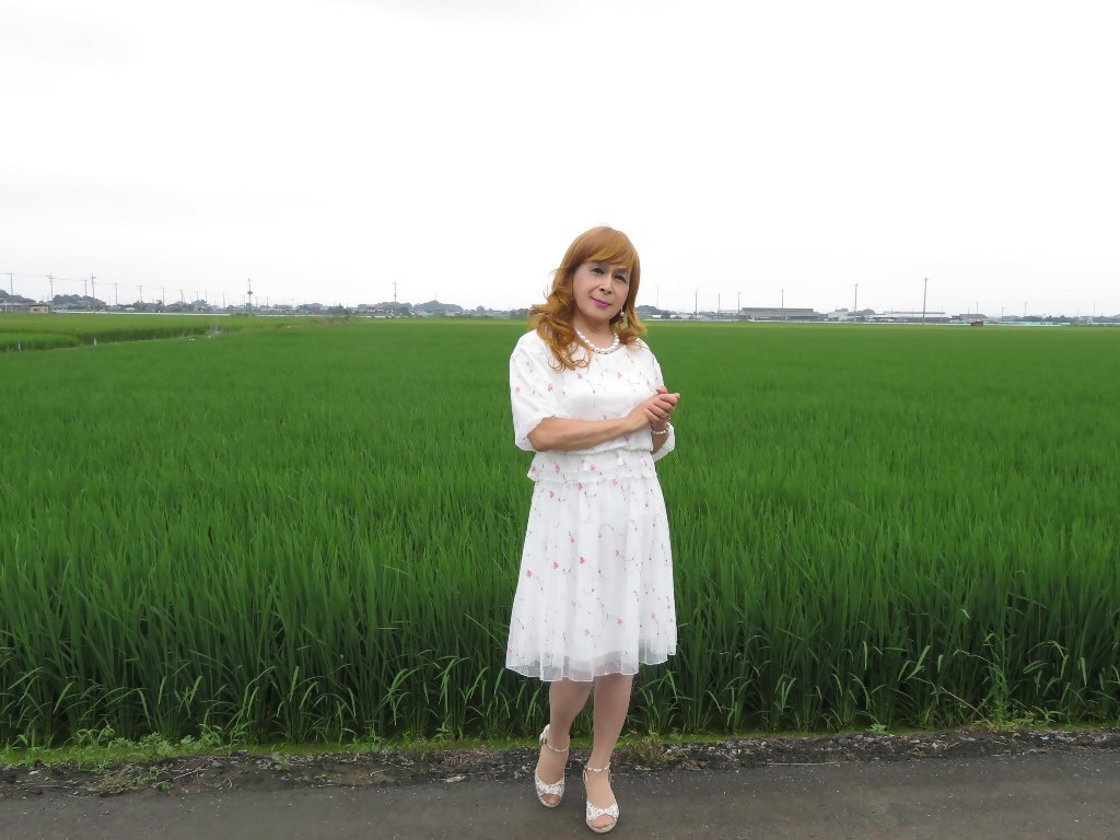 シフォン小花柄ツーピースA(8)