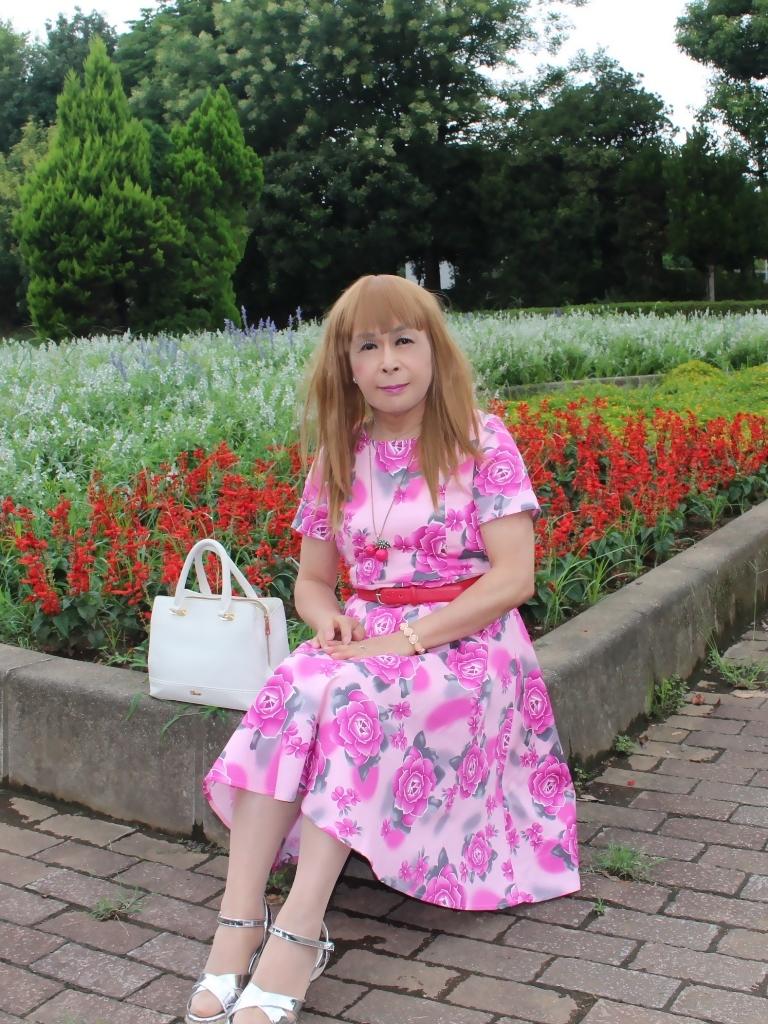 ピンクの薔薇柄ワンピD(1)