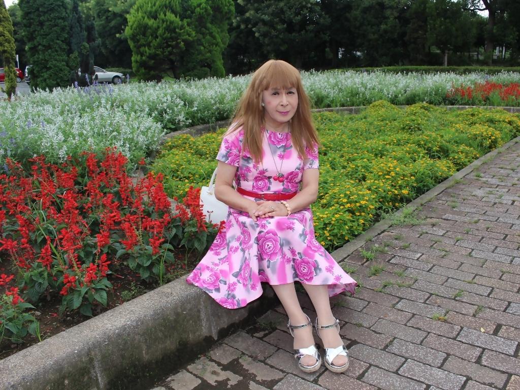ピンクの薔薇柄ワンピD(5)