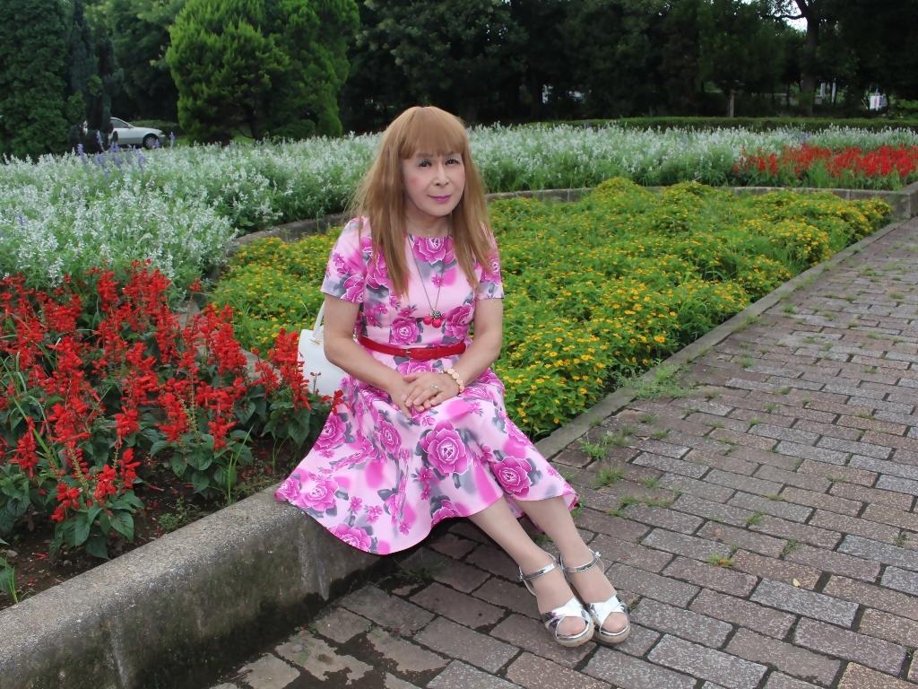 ピンクの薔薇柄ワンピD(6)