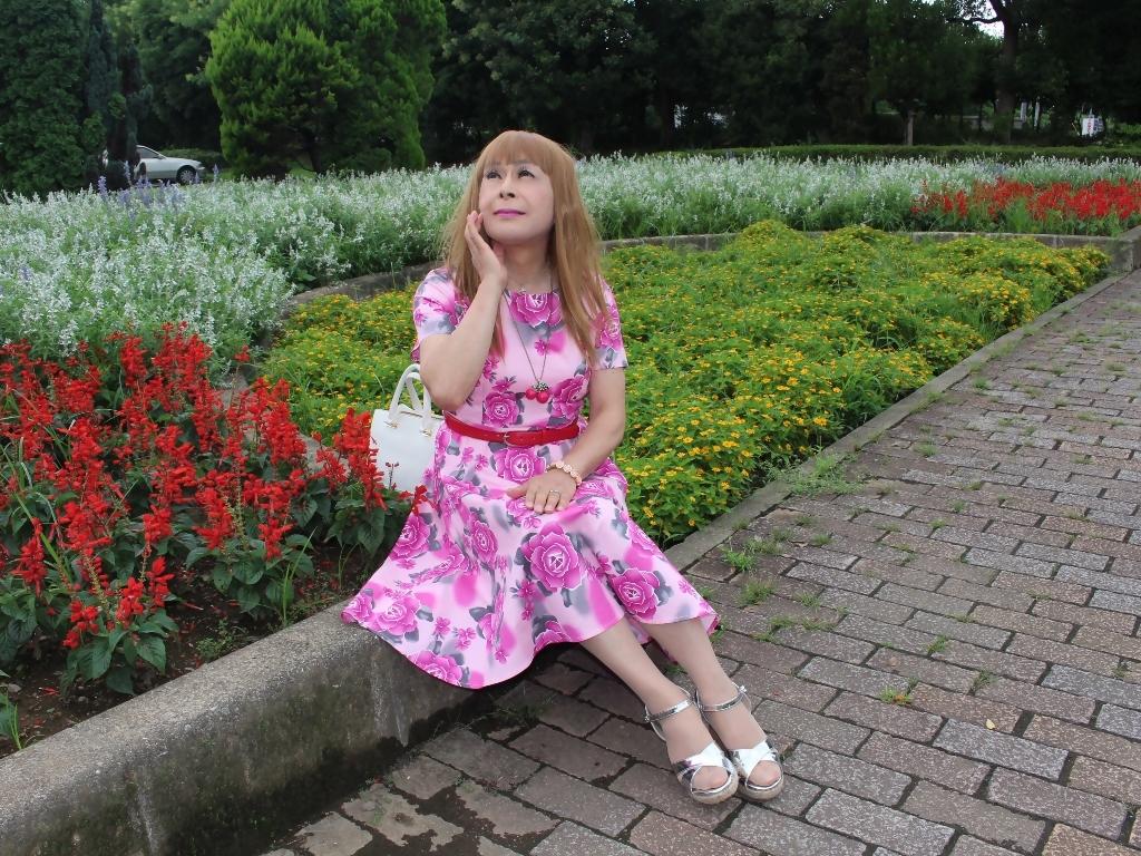 ピンクの薔薇柄ワンピD(7)