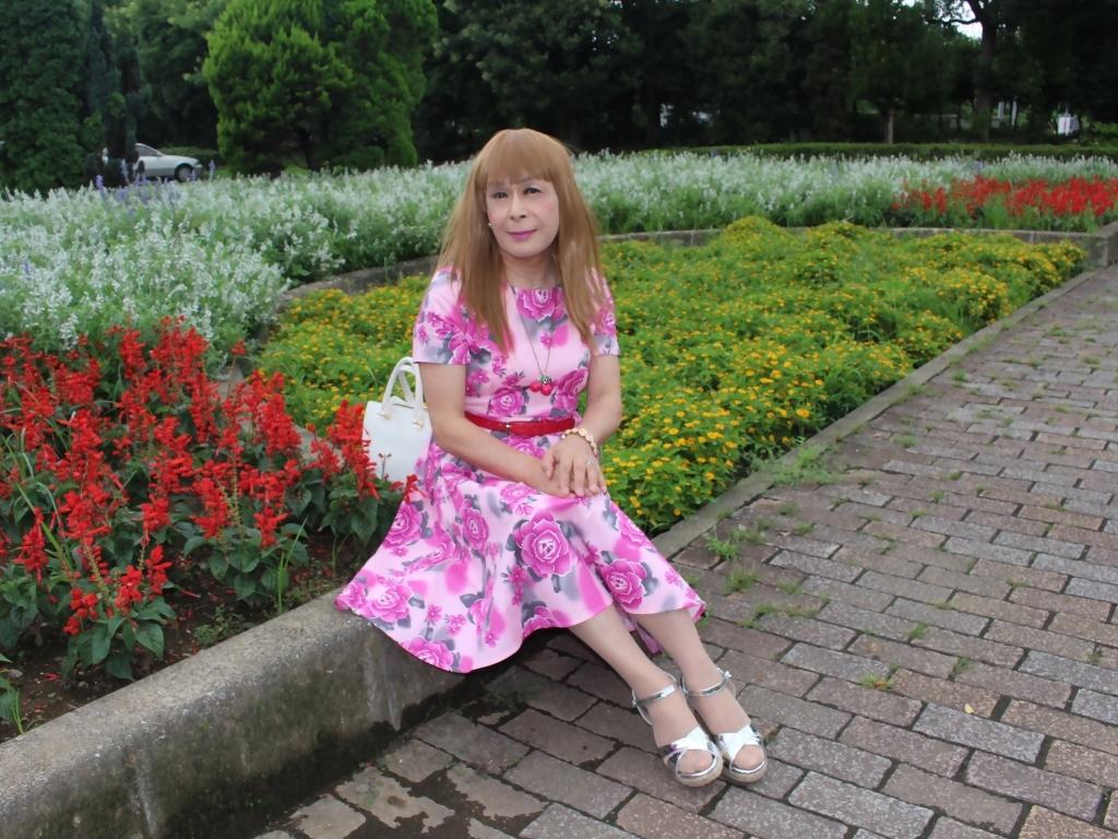 ピンクの薔薇柄ワンピD(8)