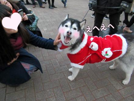 クリスマス・エヘエヘ活動