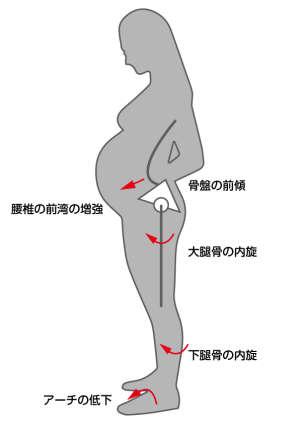 妊婦の姿勢