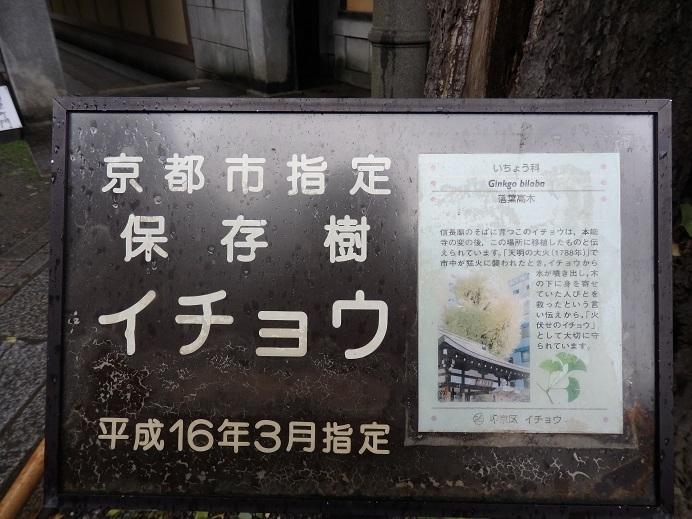 PA280177.jpg