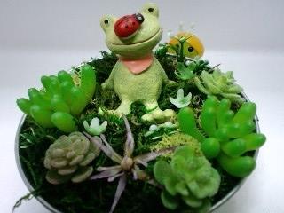蛙の多肉アレンジメント