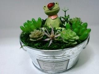 多肉アレンジメント 蛙♪