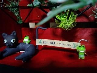 井蛙博物館第二展示室 ルソーのラベル係