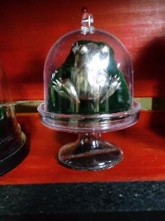 井蛙博物館第二展示室 蛙のブローチ