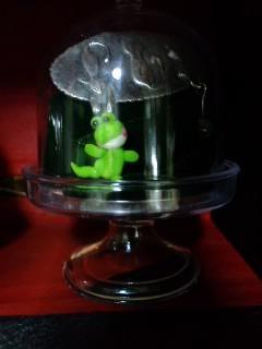 井蛙博物館第二展示室 猫のブローチ
