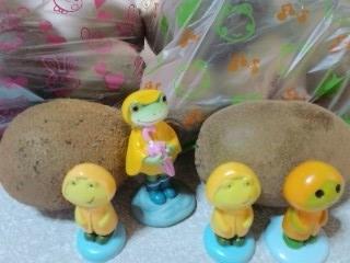 兎の袋は緑、蛙の袋は金のキウイ