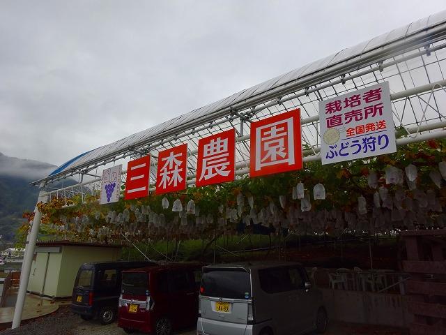三森農園 (8)