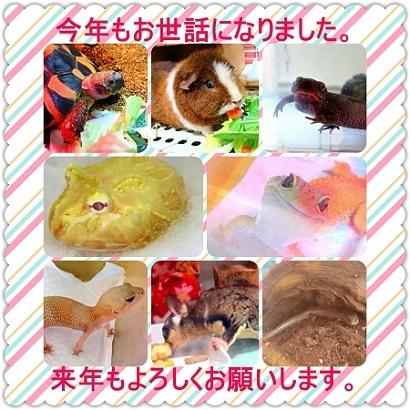 IMG_2017aisatsu2.jpg