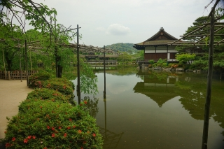 170524heianjingu(24).jpg