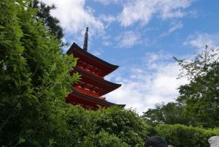 170812maimai-kiyomizu(18).jpg