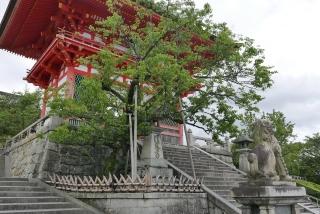 170812maimai-kiyomizu(2).jpg