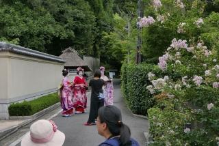 170812maimai-kiyomizu(24).jpg