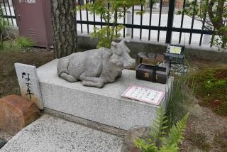 170812maimai-kiyomizu(46).jpg