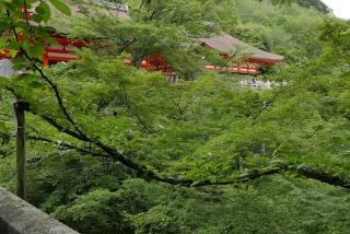170812maimai-kiyomizu(8).jpg