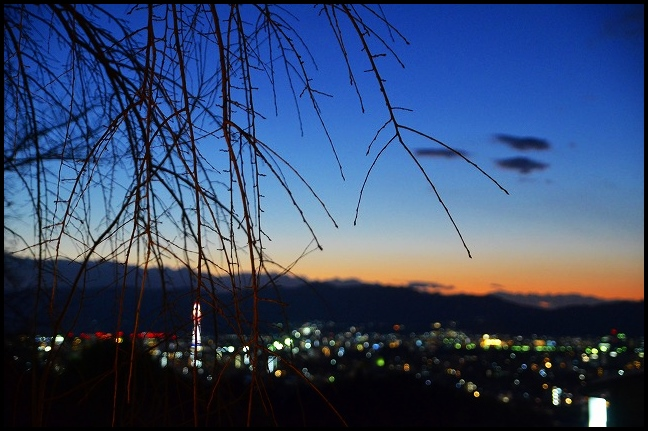 DSC_9025.jpg